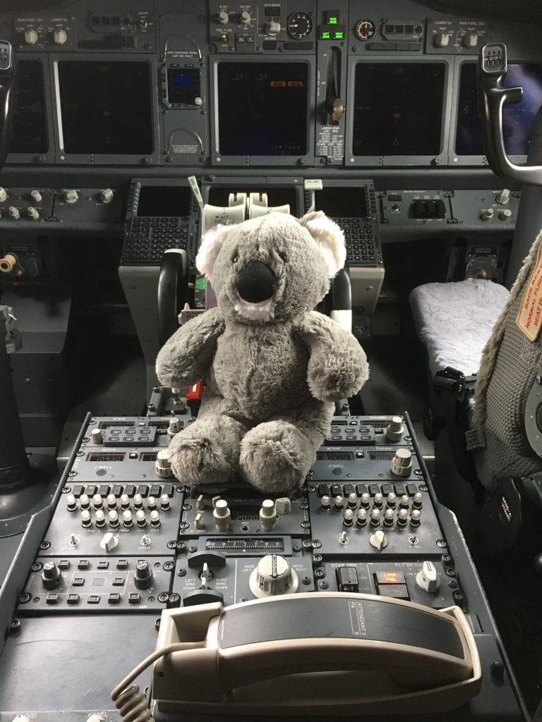 flying bear, teddy bear in a cockpit