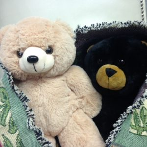 Bears, Blankets & Books - Oh My!, 2 teddy bears wrapped in a blanket