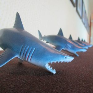 Shark Tank, row of sharks